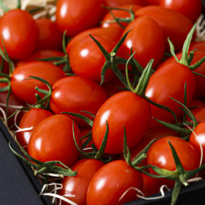 レナトマト 1kg